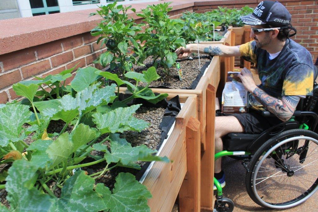 What's New in Horticultural Therapy at Magee: Summer Update - Magee